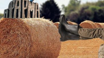 η φάρμα, η φάρμα αντ1, η φάρμα συμμετοχή, η φάρμα των επώνυμων